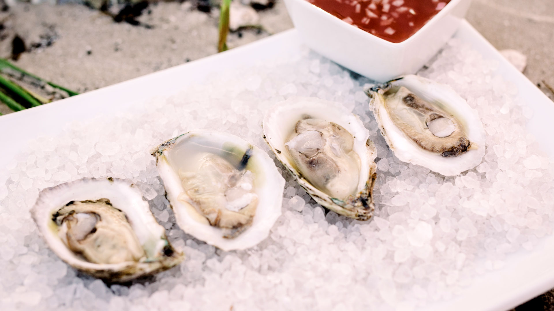 oysters in a month without an R in it