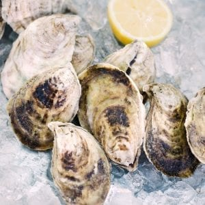 order oysters online