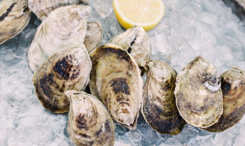 oysters without an R in the month