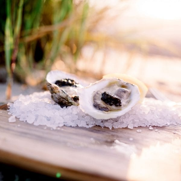 sustainable-oysters-caviar-nc